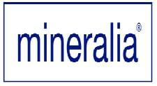 Logo Microsal